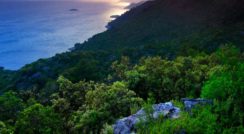 rugged and verdant coastline on Mljet