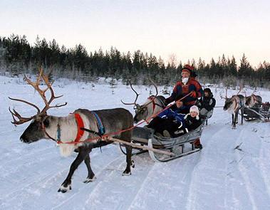 Lapland Day Trips - The Original Santa Specialist