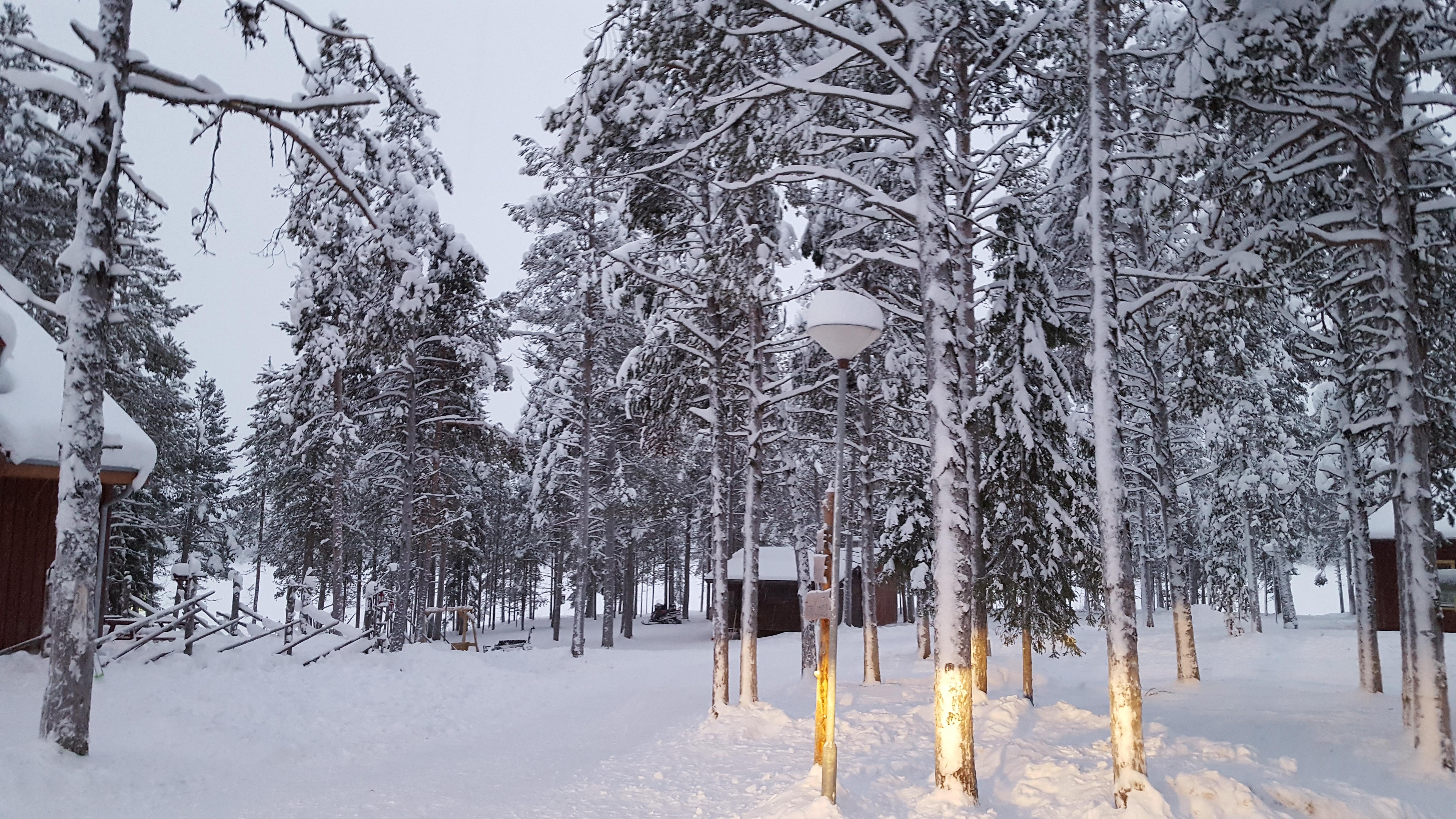 Lapland Short Breaks - The Original Santa Specialist