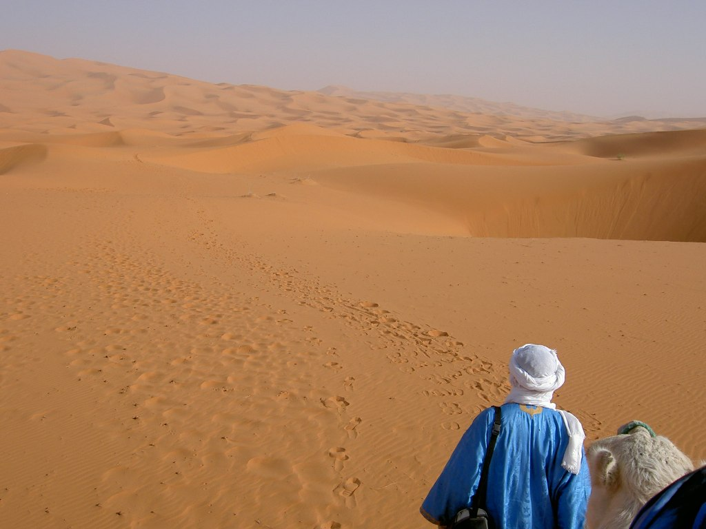 Bedouin guide into the desert landscape