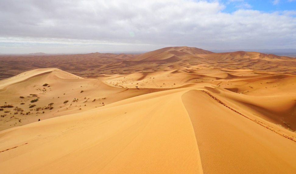 The wide open sea of dunes at Erg Chebbi
